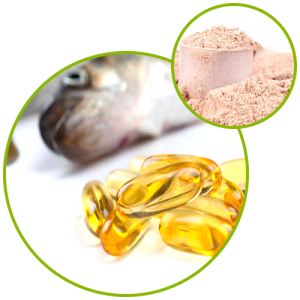 Fish Oil Powder