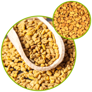 Methi Extract