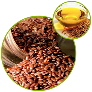 Flax Seed Oil Powder