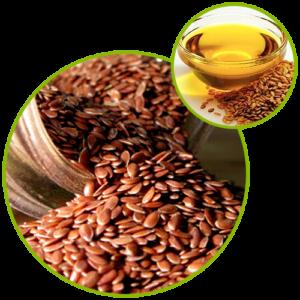 Flax Seed Oil Powder