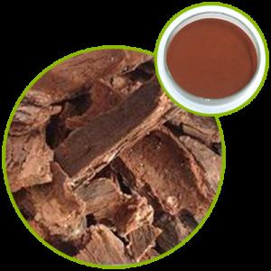 Pine Bark Extract Proanthocyanidins OPC