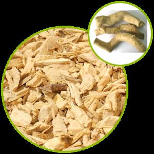 Tongkat Ali Extract 100:1 Longjack, Eurycoma Longifolia