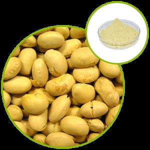 Soybean Extract 40% Isoflavones