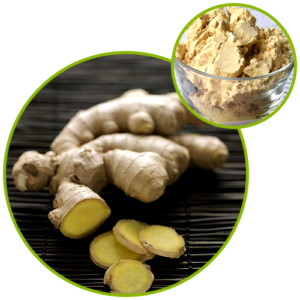 Ginger Root Extract Gingerols