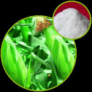 Fructo Oligosaccharide (FOS)