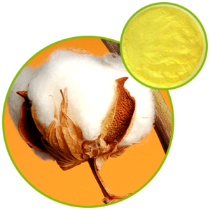 Cotton Seed Extract